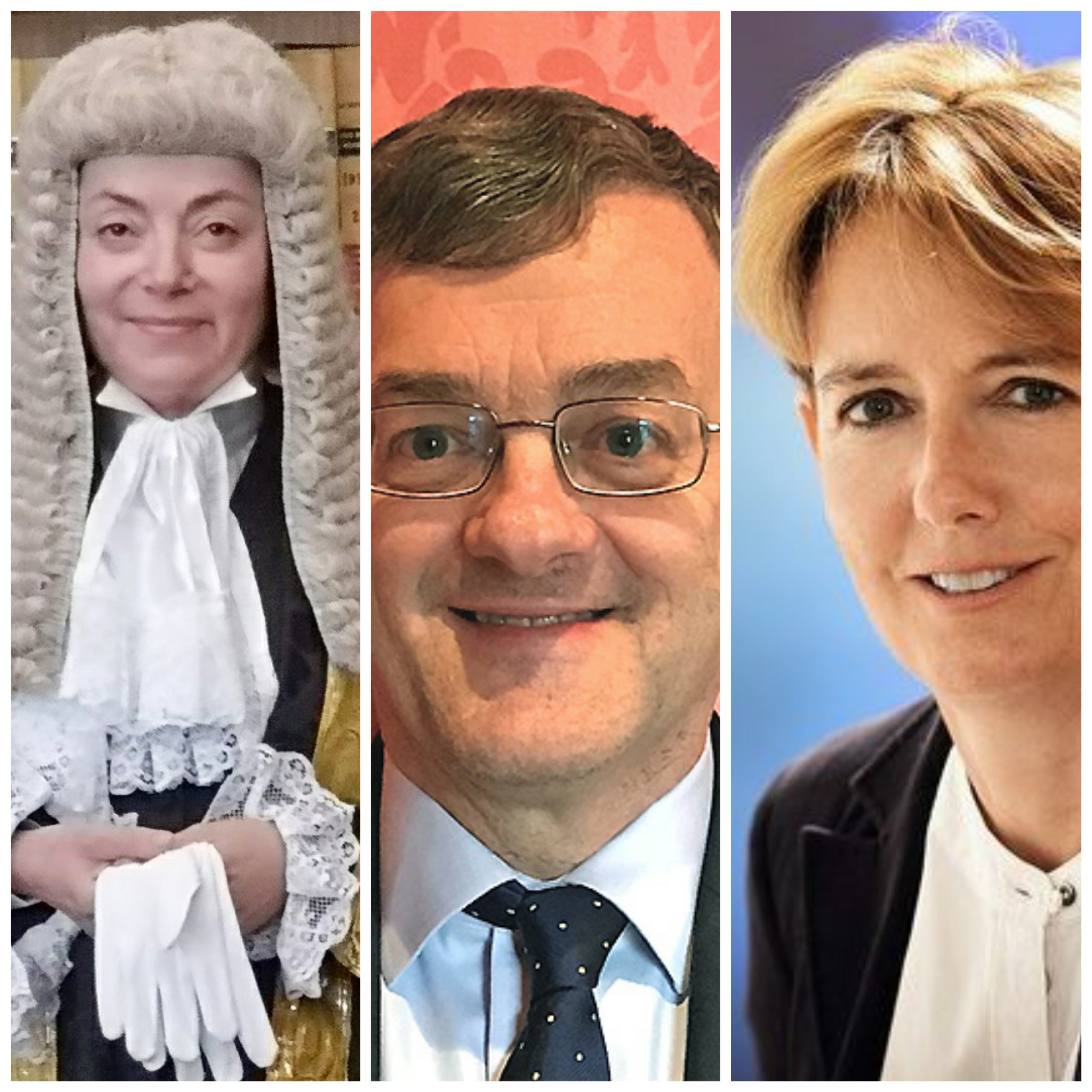 Common Sense Champions: Dame Victoria Sharp, Lord Justice Lewis, and Mrs Justice Lieven